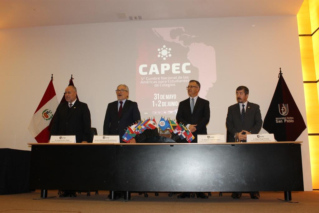 CAPEC20196