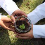 ciencia tecnologia y ambiente colegio max uhle arequipa