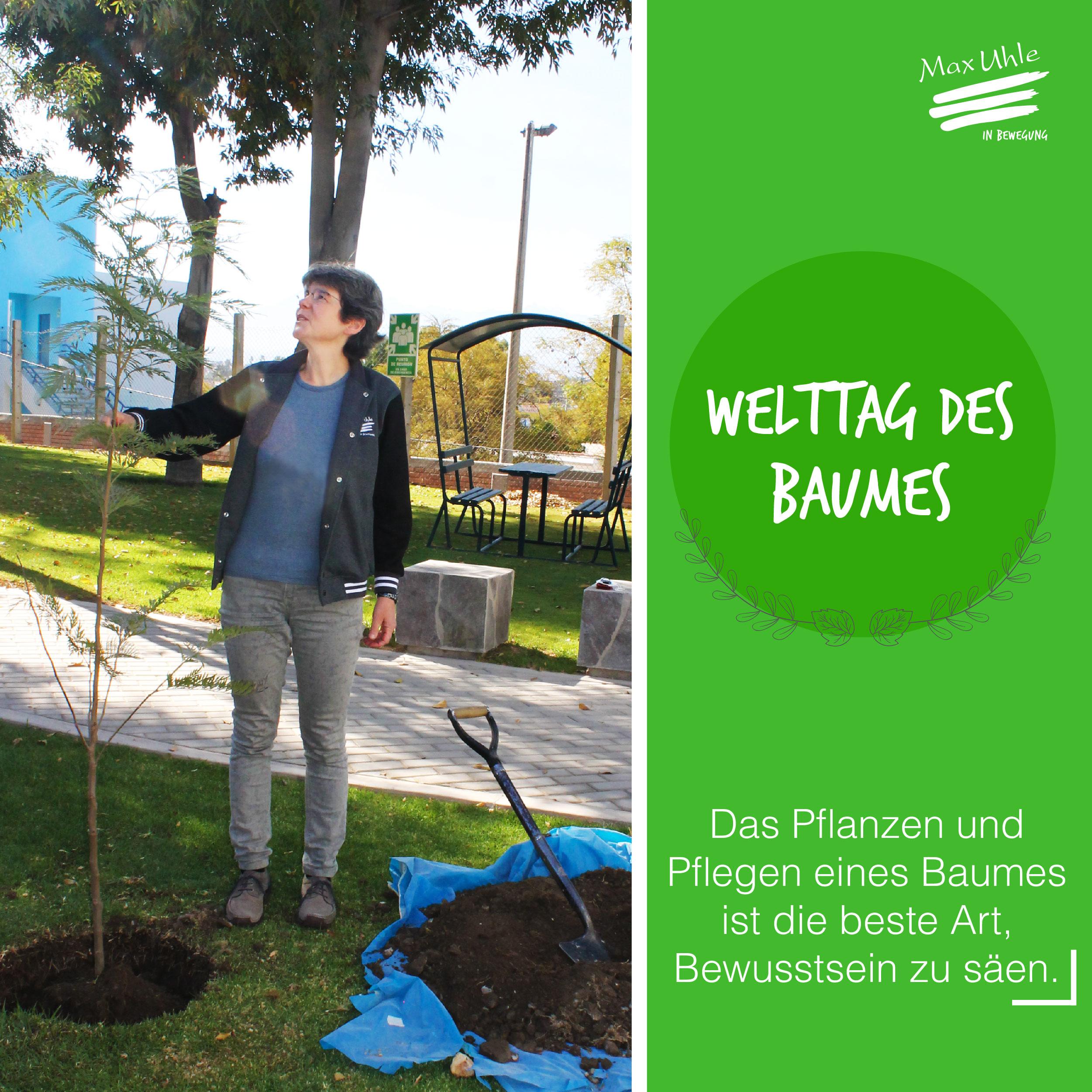 Dia Mundial del Árbol redes ALEMAN-05